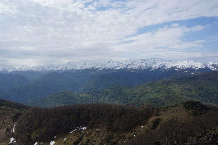 Pic de la Paloumère (1608 m) et crêtes de Cornudère depuis le col de Portet d'Aspet