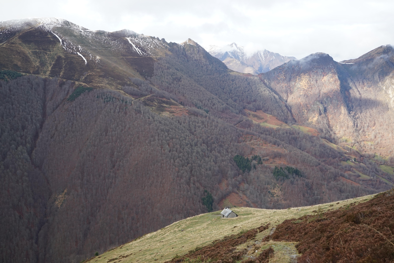 Tuc du Coucou (1890 m) depuis la Pucelle
